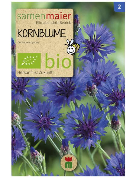 SAMEN MAIER Kornblume, blau