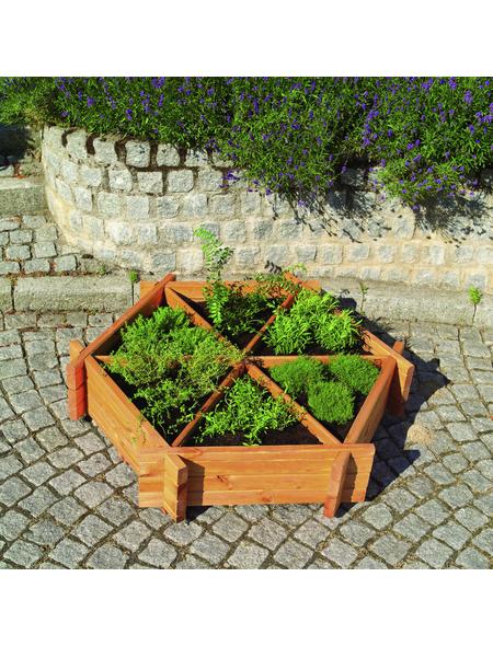 PROMADINO Kräuterbeet, BxH: 122 x 27 cm, Holz/Kunststoff