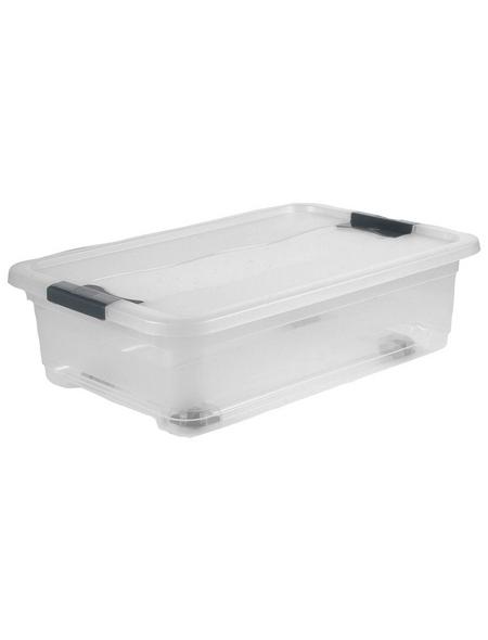 Kristallbox, BxHxL: 39 x 18 x 59 cm, Kunststoff