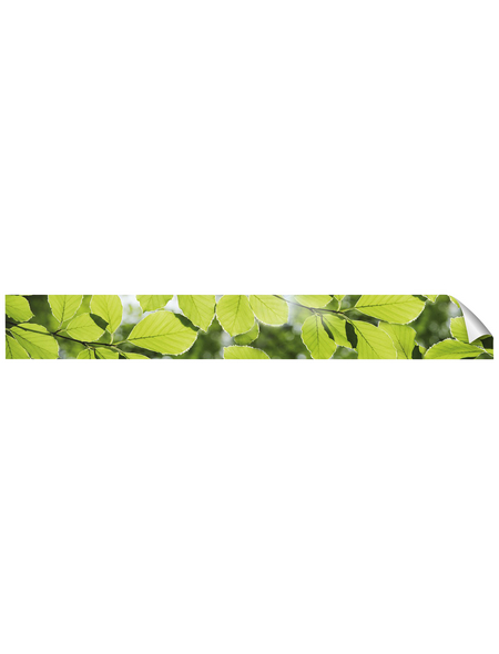 mySPOTTI Küchenrückwand-Panel, fixy, Blätter, 450x60 cm