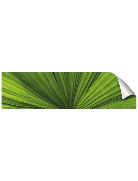 mySPOTTI Küchenrückwand-Panel, fixy, Blattstruktur, 220x60 cm