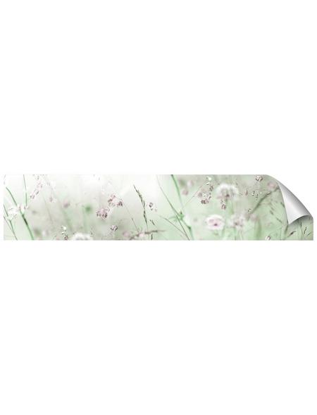 mySPOTTI Küchenrückwand-Panel, fixy, Wiese, 280x60 cm