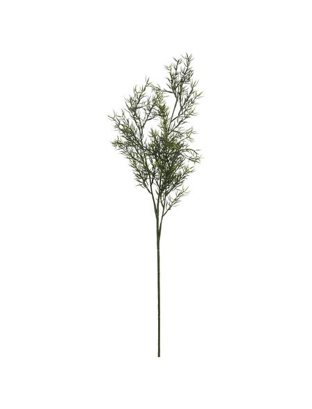 Flower-Power Kunstpflanze, Asparaguszweig, grün