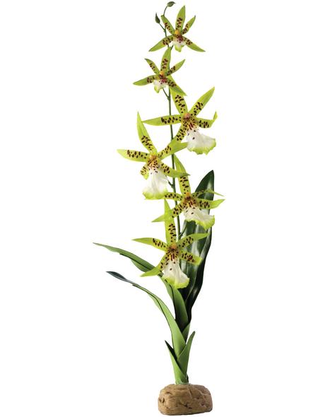EXO TERRA Kunstpflanze, Rainforest Ground Plants - Spinnen Orchidee