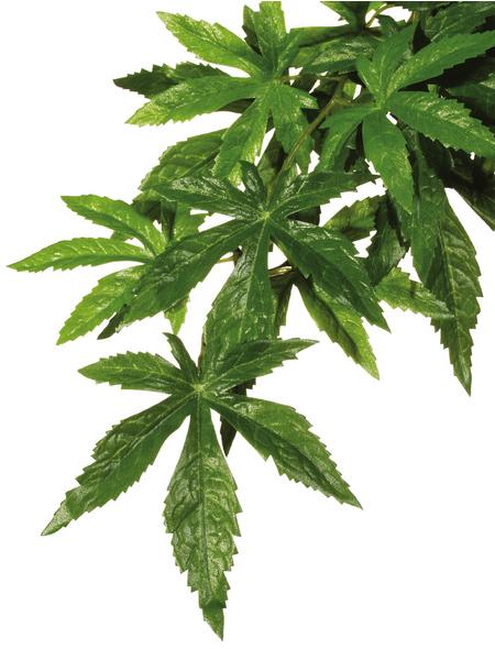 EXO TERRA Kunstpflanze, Rainforest Hanging Plants - Abuliton