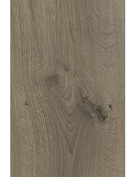 KAINDL Laminat, 10 Stk./2,2 m², 8 mm,  Eiche Pleno
