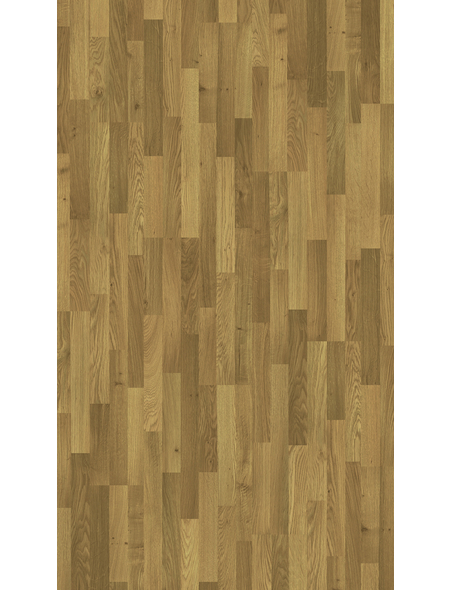 PARADOR Laminat »Basic 200«, 11 Stk./2,99 m², 7 mm,  Eiche Natur