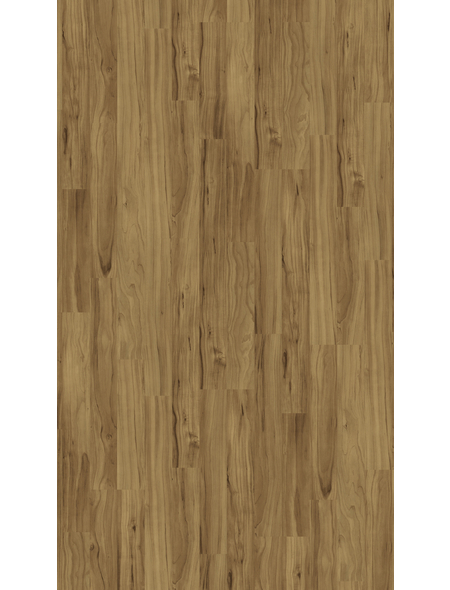 PARADOR Laminat »Basic 400«, 10 Stk./2,49 m², 8 mm,  Apfel Bernstein