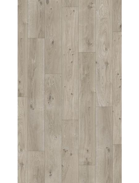 PARADOR Laminat »Basic 400«, 10 Stk./2,49 m², 8 mm,  Eiche Natur grau
