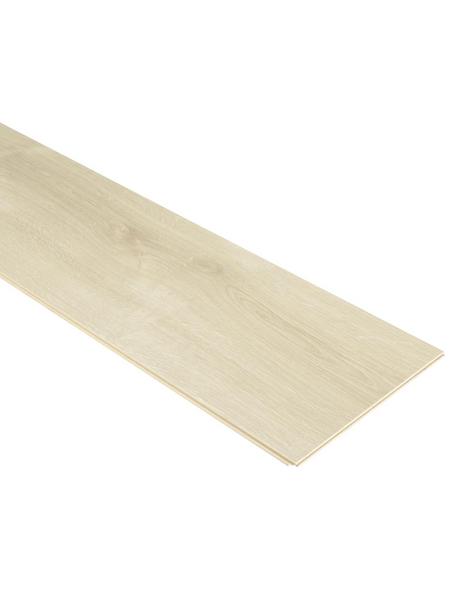 PARADOR Laminat »Basic 600«, BxL: 243 x 1285 mm, Stärke: 8 mm, Eiche Avant geschliffen