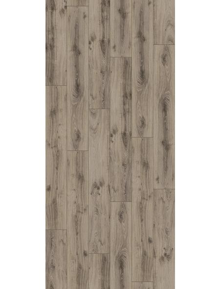 PARADOR Laminat »Classic 1050«, 10 Stk./2,49 m², 8 mm,  Eiche Tradition Grau-beige