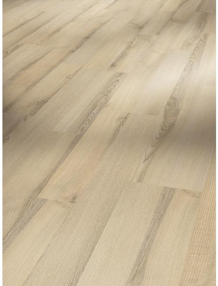 PARADOR Laminat »Classic 1050«, 10 Stk./2,49 m², 8 mm,  Esche Tropic