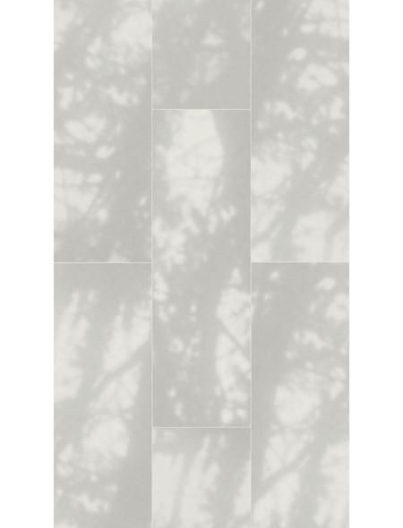 PARADOR Laminat »Edition«, 5 Stk./2,57 m², 8 mm,  Cèdre