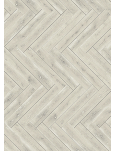 PARADOR Laminat »Trendtime 3«, 13 Stk./1,6 m², 8 mm,  Eiche Vintage weiss