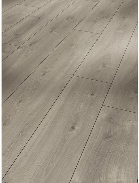 PARADOR Laminat »Trendtime 6«, 5 Stk./2,67 m², 9 mm,  Eiche Mistral grau