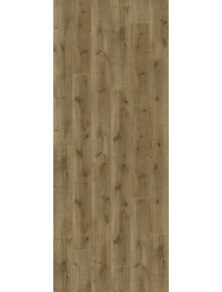 PARADOR Laminat »Trendtime 6«, 5 Stk./2,67 m², 9 mm,  HolzfällerEiche
