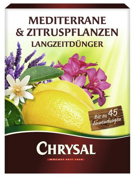 Chrysal Langzeitdünger, schützt u. a. vor Nährstoffmangel & Magnesiummangel