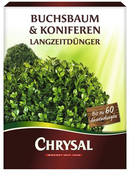 Chrysal Langzeitdünger, schützt vor Nährstoffmangel & Magnesiummangel