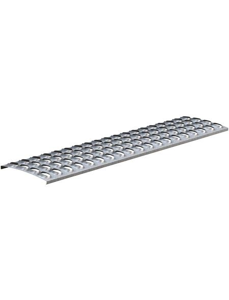 SAREI Laufrost verzinkter Stahl