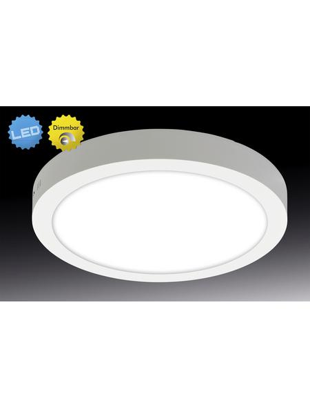 NÄVE LED-Aufbaupanel »Dimplex«, dimmbar, inkl. Leuchtmittel in warmweiß