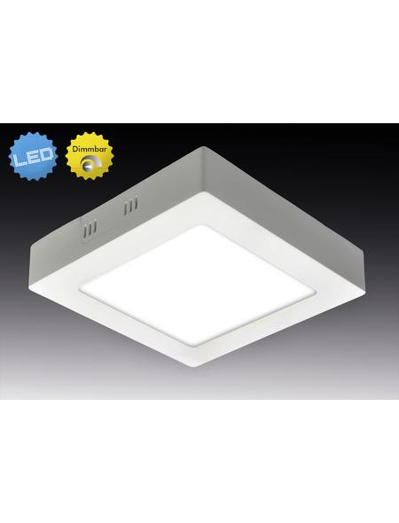 NÄVE LED-Aufbaupanel »Dimplex« weiß 1-flammig, dimmbar, inkl. Leuchtmittel in warmweiß