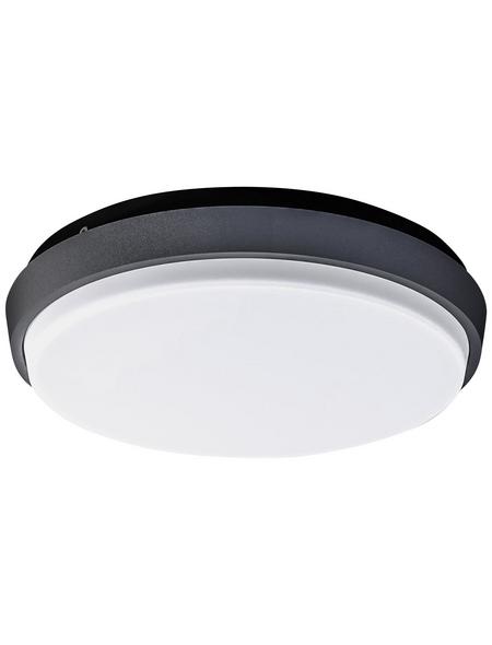 NÄVE LED-Außenwandleuchte »Mio«, 10 W