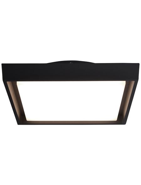 NÄVE LED-Außenwandleuchte »Mio«, 25 W