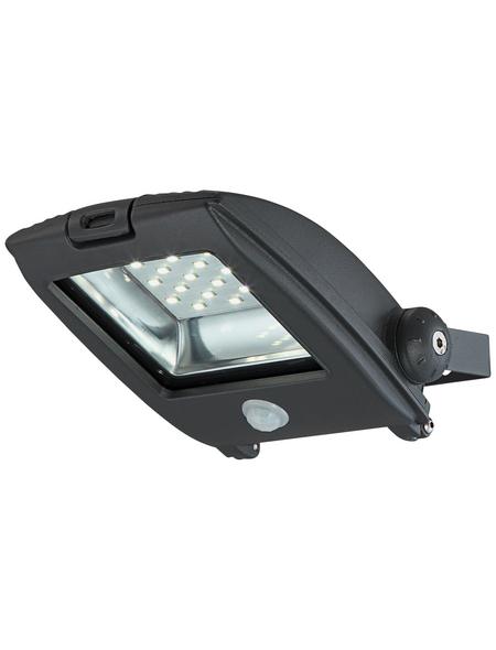 GLOBO LIGHTING LED-Außenwandleuchte »PROJECTEUR 1«, 20 W, inkl. Bewegungsmelder, IP65, tageslichtweiß