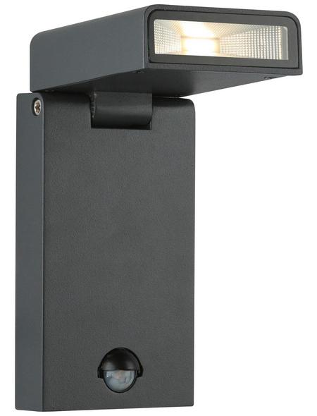 GLOBO LIGHTING LED-Außenwandleuchte »SPARROW«, 6,8 W, inkl. Bewegungsmelder, IP44, warmweiß