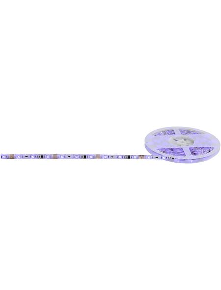 GLOBO LIGHTING LED-Band, Länge: 500 cm, 353 lm