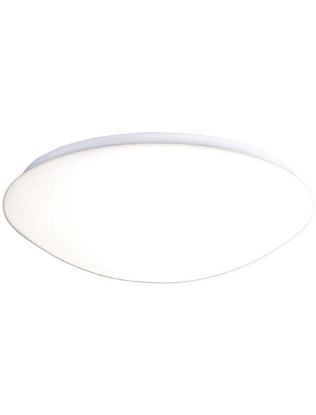 NÄVE LED-Deckenleuchte »Bern«, dimmbar, inkl. Leuchtmittel in neutralweiß/warmweiß/kaltweiß