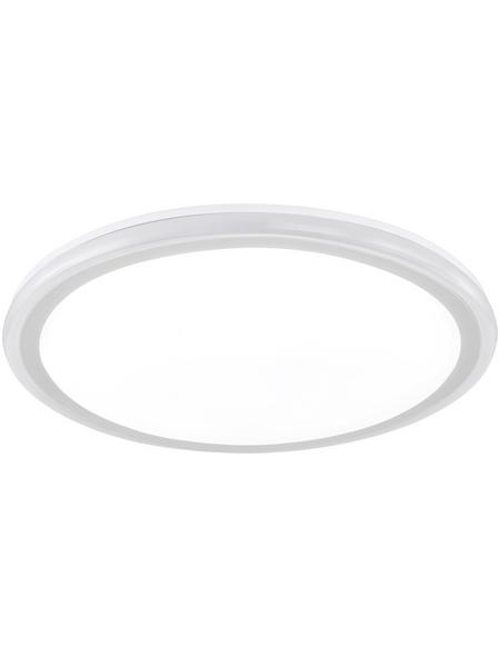 wofi® LED-Deckenleuchte »BODO«, dimmbar, inkl. Leuchtmittel in tageslichtweiß
