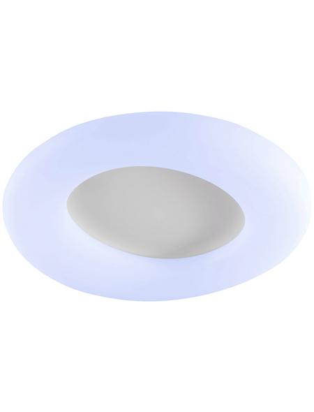 wofi® LED-Deckenleuchte »COUNTY«, dimmbar, inkl. Leuchtmittel in tageslichtweiß