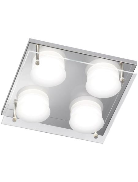 wofi® LED-Deckenleuchte »ENVY«, inkl. Leuchtmittel in warmweiß