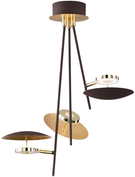 wofi® LED-Deckenleuchte goldfarben 3-flammig, inkl. Leuchtmittel in warmweiß
