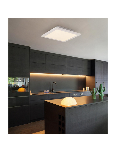 LED-Deckenleuchte »ROSI« weiß 1-flammig, dimmbar, inkl. Leuchtmittel