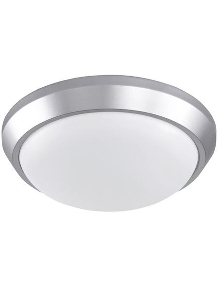 wofi® LED-Deckenleuchte »SANA«, inkl. Leuchtmittel in warmweiß
