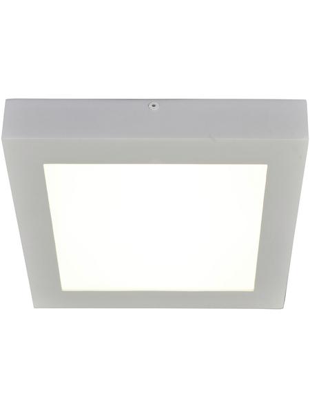 NÄVE LED-Deckenleuchte »Simplex« weiß 1-flammig, inkl. Leuchtmittel in warmweiß