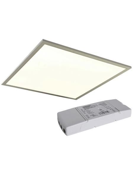 NÄVE LED-Deckenleuchte stahlfarben/weiss 1-flammig, inkl. Leuchtmittel in warmweiß