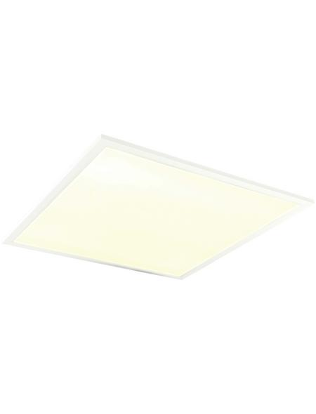 NÄVE LED-Einlegepanel, inkl. Leuchtmittel in neutralweiß