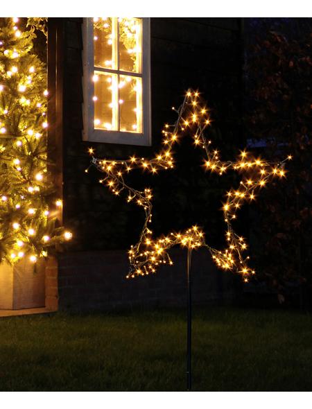 CASAYA LED-Gartenstecker »Garden d'light«, sternförmig, ø: 60 cm, Netzbetrieb