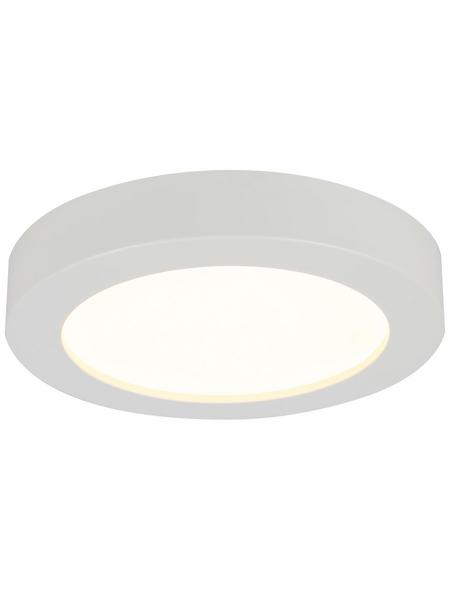 GLOBO LED-Hängeleuchte »PAULA«, inkl. Leuchtmittel in warmweiß