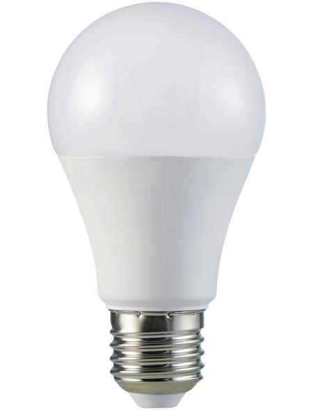 CASAYA LED-Leuchtmittel, 12 W, E27, warmweiß