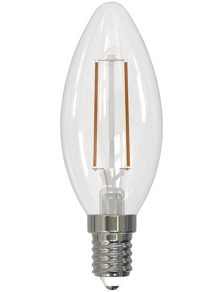 CASAYA LED-Leuchtmittel, 2,5 W, E14, 2700 K, warmweiß, 245 lm
