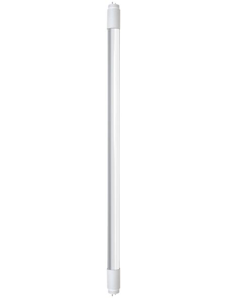 CASAYA LED-Leuchtmittel »600«, 9 W, G13, kaltweiß