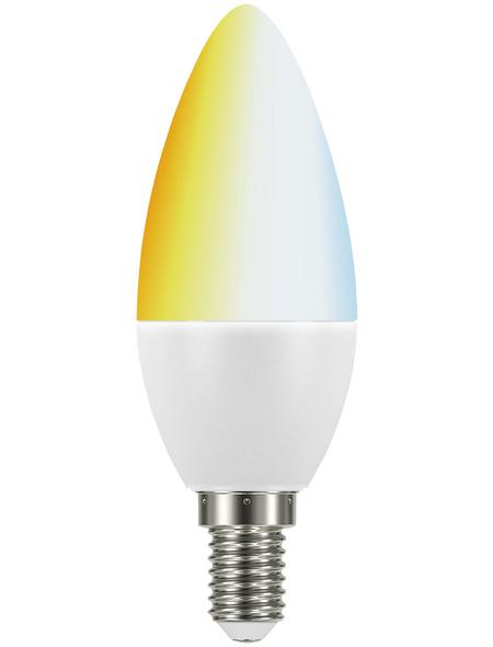 MÜLLER LICHT LED-Leuchtmittel, E14, warmweiß/neutralweiß, 470 lm