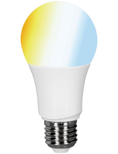 MÜLLER LICHT LED-Leuchtmittel, E27, warmweiß/neutralweiß, 806 lm
