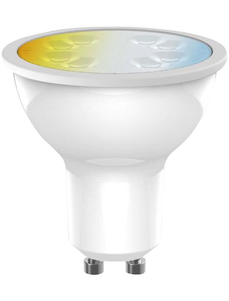 MÜLLER LICHT LED-Leuchtmittel, GU10, warmweiß/neutralweiß, 350 lm