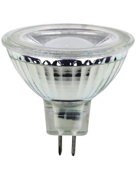 CASAYA LED-Leuchtmittel »Retro HD«, 5 W, GU5.3, warmweiß