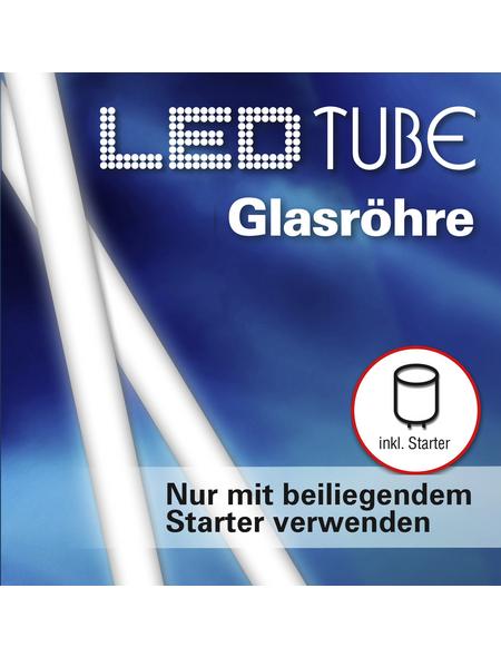 NÄVE LED-Leuchtröhre, 10 W, fest verbaut, 4000 K, neutralweiß, 900 lm